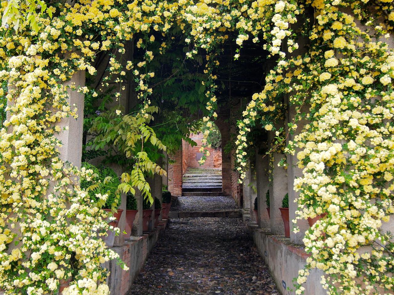 Generalife Gardens at the Alhambra in Granada, Spain