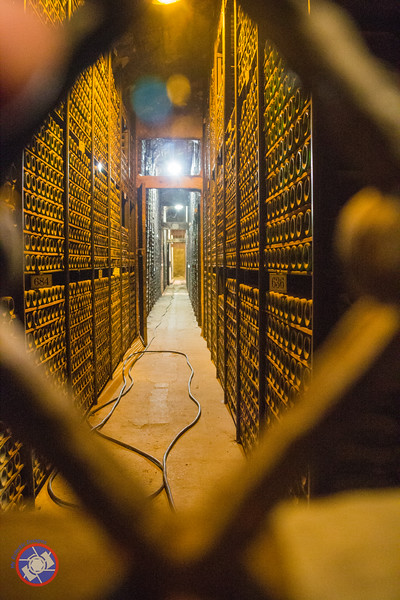 The Owners Wine Vault at Marques de Riscal Winery in Elciego (©simon@myeclecticimages.com)