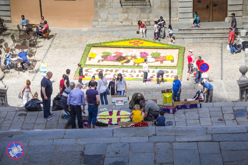 Work Progressing on Two Floral Tapestries in Front of the Cathedral, Girona (©simon@myeclecticimages.com)