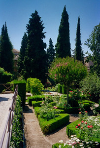 The Gardens of the Generalife in the Alhambra, Grenada, Spain