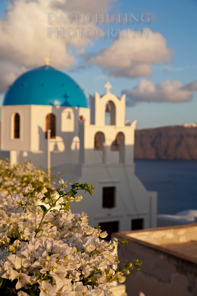 Santorini Flower Sunset Vertical
