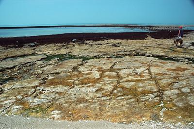 Seashore on the Île d'Aix