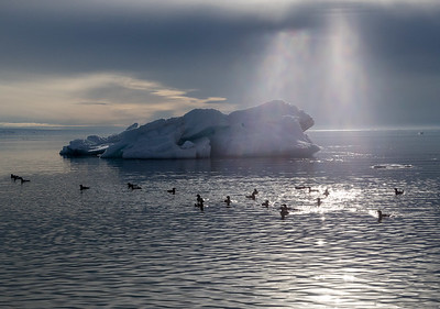 Dramatic sunbeams highlight an iceberg above the arctic circle