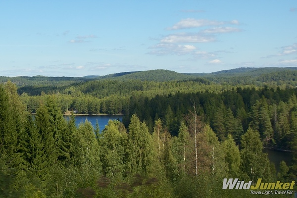 Endless greenery in Dalsland