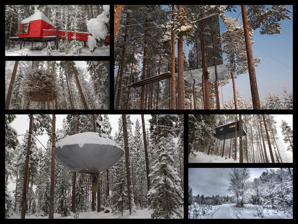 A collage of the differnent treehouses at Treehotel