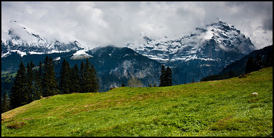 Walk from Mürren to Grütschalp