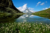 A small lake alongside the trail between Gornergrat and Zermatt, near Riffelsee, with the Matterhorn in the background.