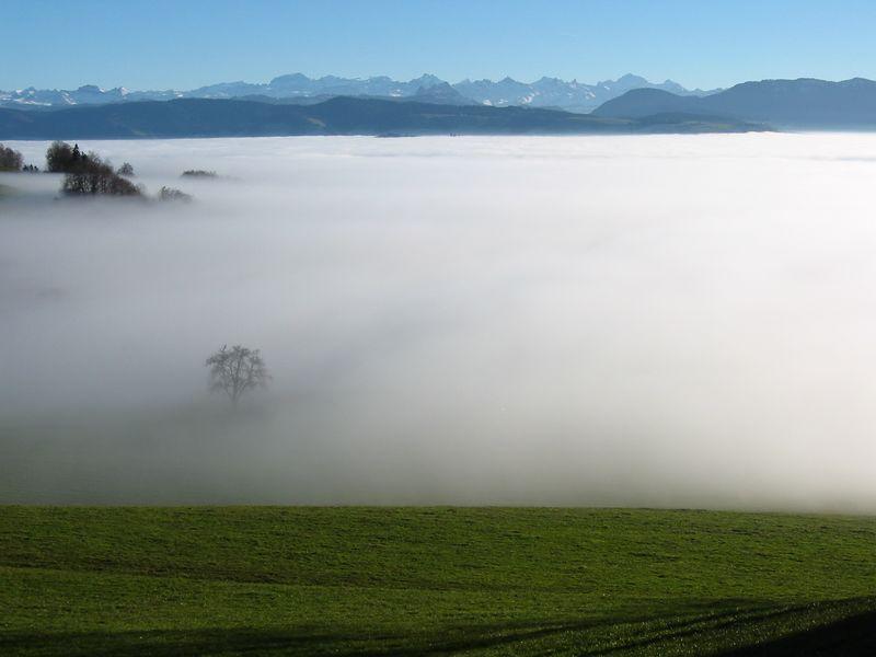 Nebelmeer ('sea of clouds') - Albishorn, Switzerland