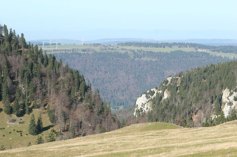 View back down through the Combe Grède