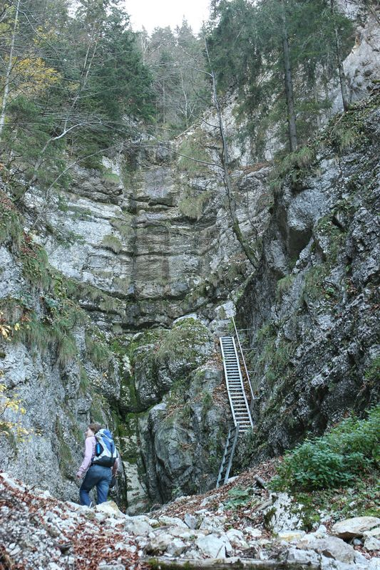 Path up the Combe Grède.  Terri had to lift our dog up the first part of the second ladder, it was a little harrowing.
