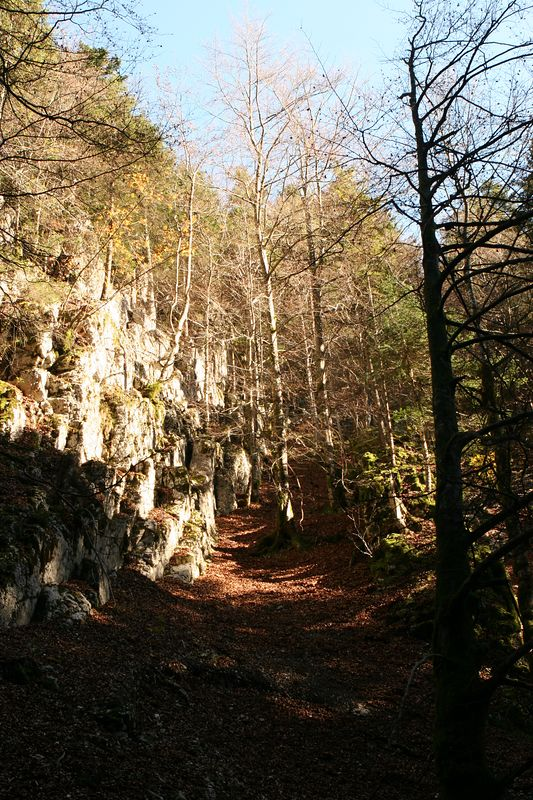 Path up the Combe Grède