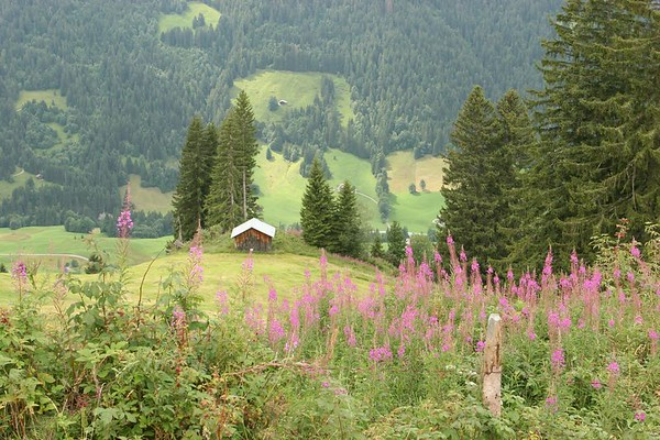 Gstaad landscape, canton Berne