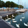 Switzerland, Lake Geneva Region, Lausanne, Promenade, Boat Harbor
