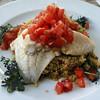 Switzerland, Lake Geneva Region, Lausanne, Cuisine Cafe des Artisans, Lake Fish on Couscous