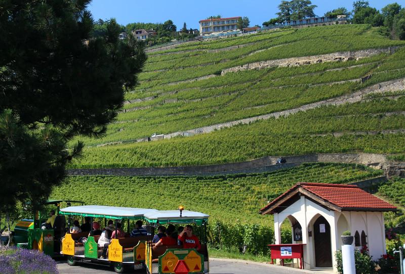Switzerland, Lake Geneva, Lavaux Express Wine Train