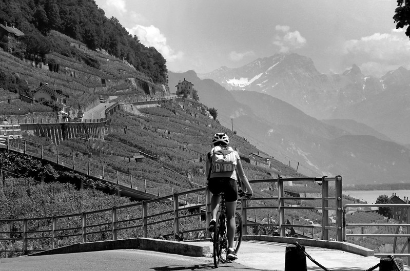 Switzerland, Lake Geneva Region, Lavaux