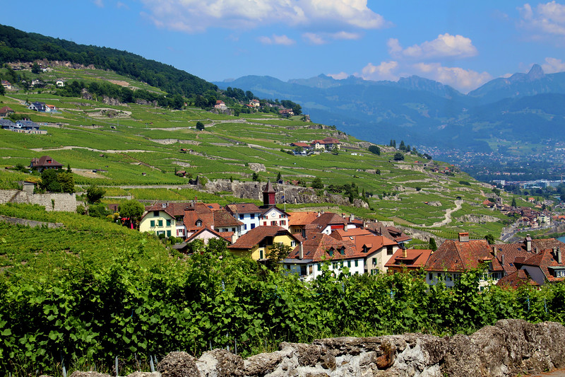 Switzerland, Lake Geneva Region, View on Town of Rivaz, Lavaux Region