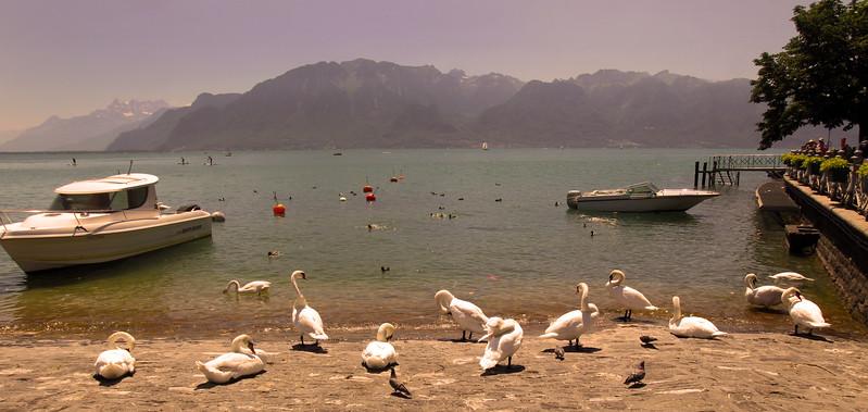 Switzerland; Lake Geneva Region, Vevey