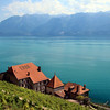 Switzerland, Lake Geneva Region, Lavaux, Clos des Abbayes