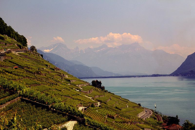 Switzerland, Lake Geneva Region, Lavaux Wine Region