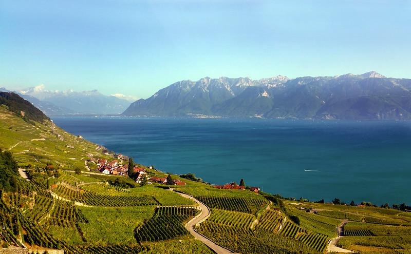 Switzerland, Lake Geneva Region, View on the Lavaux Wine Region, a UNESCO site
