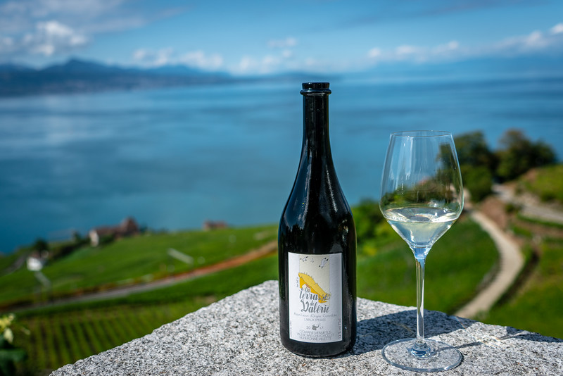 There are many small wineries in Lavaux