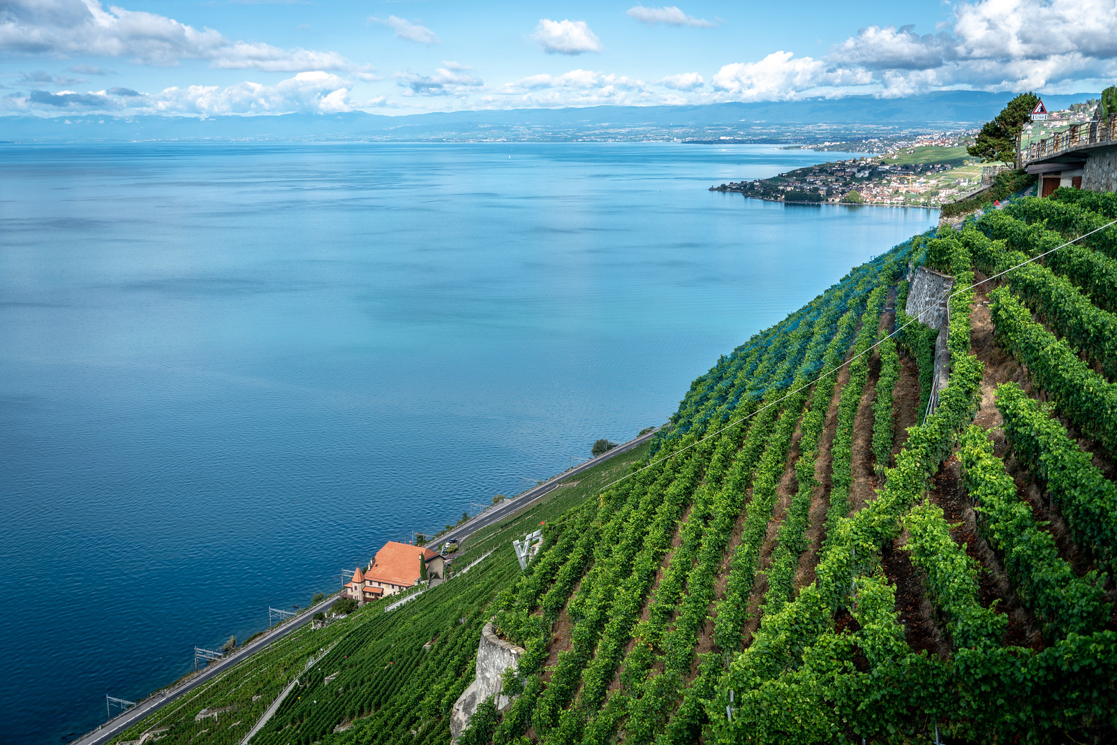 Lavaux Vineyard Terraces, Switzerland