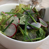 Switzerland, Pays-d'Enhaut, Salad, Hotel Valrose