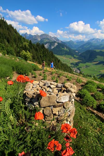 Switzerland, Rougement & Swiss Alps, Les Jardin des Monts