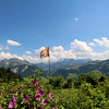 Switzerland, Pays-d'Enhaut, View Over Valley, Jardin des Monts