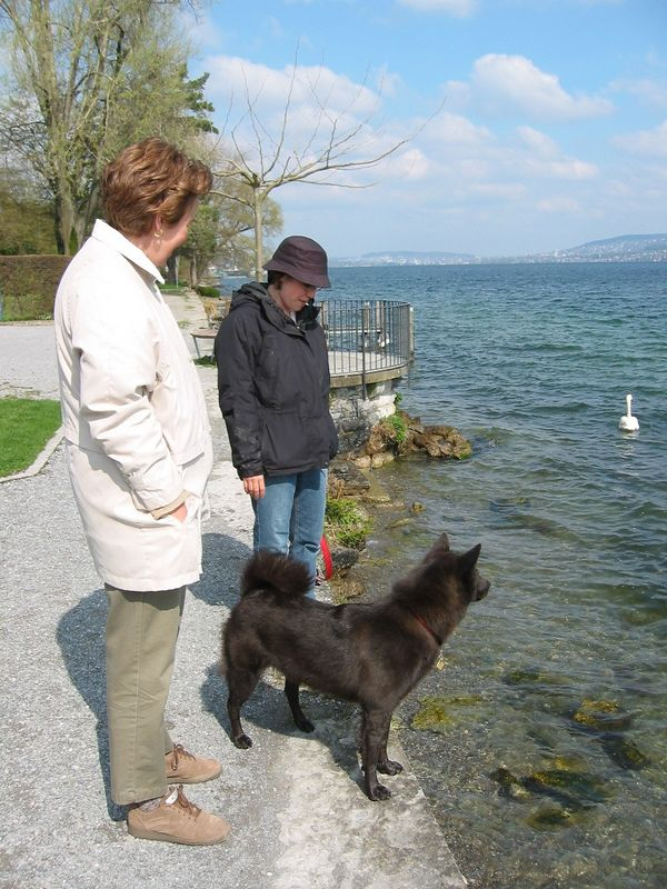 Mom, Terri, and Coco by Lake Zurich in front of our apartment