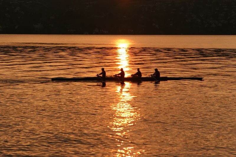 Rowers on Lake Zurich