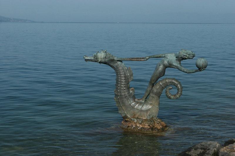 Seahorse, Vevey