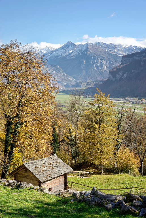 Swiss alps in autumn portrait