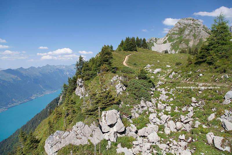 Schynige Platte and Brienzersee, Bernese Oberland, Switzerland.