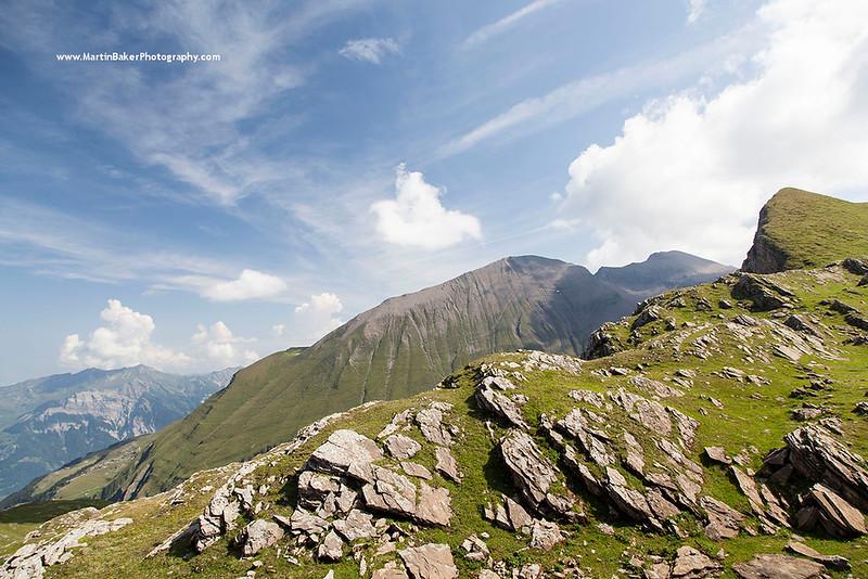 Wart, First, Grindelwald, Bernese Oberland, Switzerland.