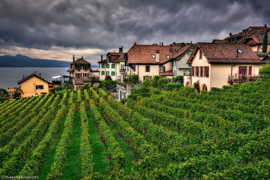 Swiss Wine Region