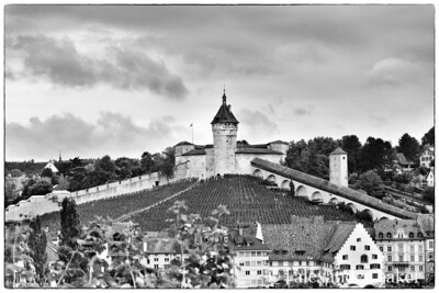 Schaffhausen Castle