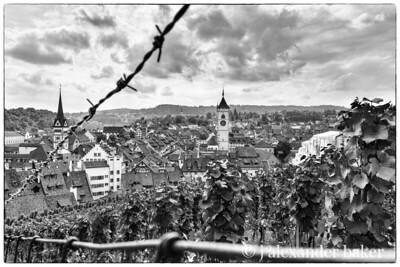 Schaffhausen - view from Castle vinyard