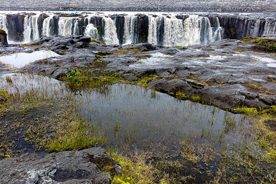 Selfoss with its many falls provides its own watering system of mist for all the nearby plants