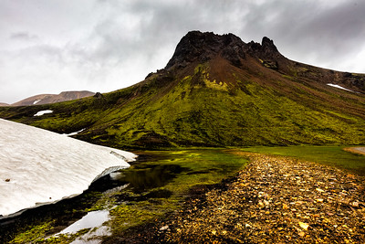 Tall peaks and cloudy skies with extensive snow fields even in July explain the green moss and flowing rivers
