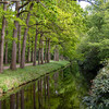 Water canal in the park at spring