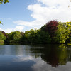 A pond in the park with trees and sky reflextion