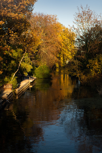 Water canal in autumn sun