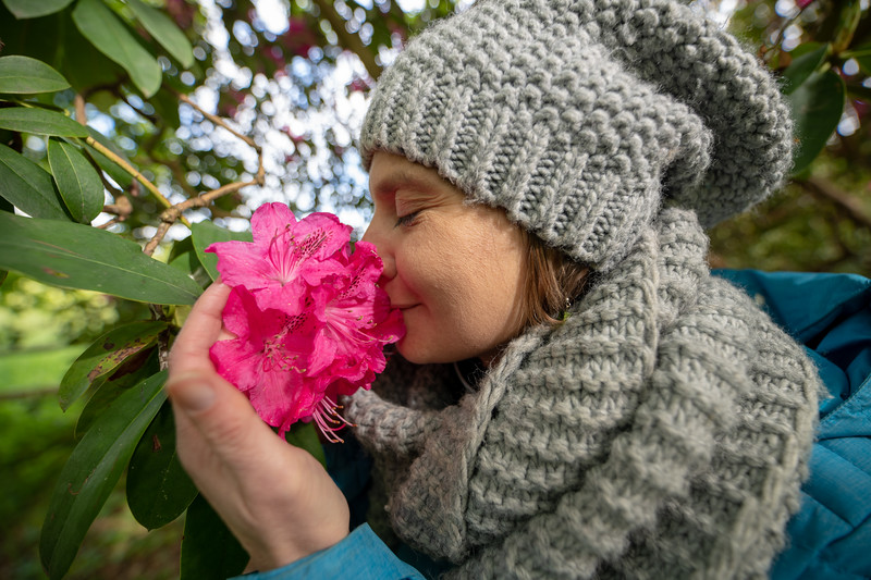 Smelling rhododendron