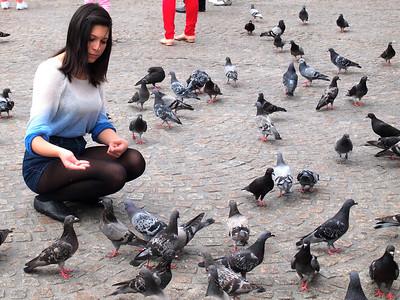 Pigeons in Dam Square