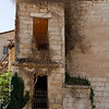 A dried out vine adorns this house that is crumbling with age.  Yet, just as renovation will give the building a new life, fresh vines are creeping up the walls.