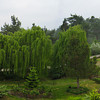 Panoramic view of the grounds from the window in the sitting area of my room.