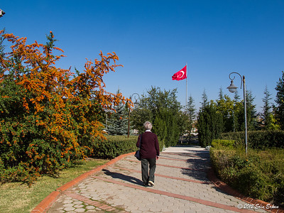 Stroll on the grounds of Anadolu University. 14 Oct 2012