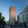Galata Tower with gulls and swallows